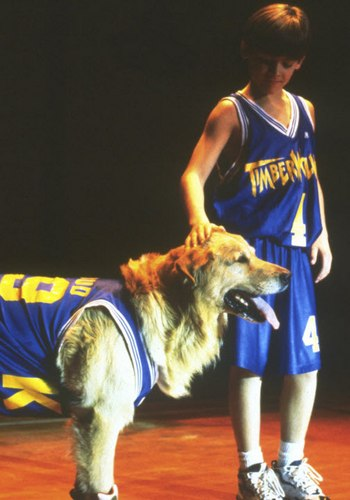 Picture for Air Bud