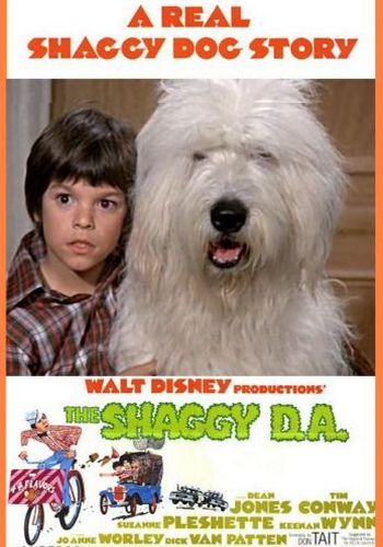 Picture for The Shaggy D.A.