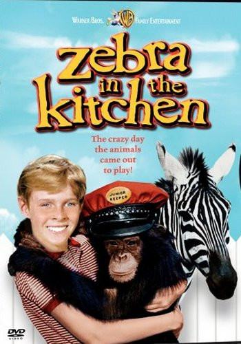 Picture for Zebra in the Kitchen