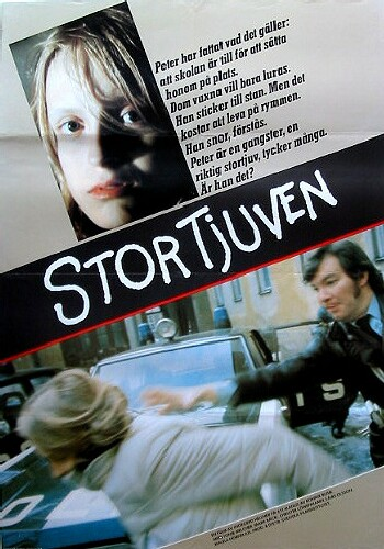 Picture for Stortjuven