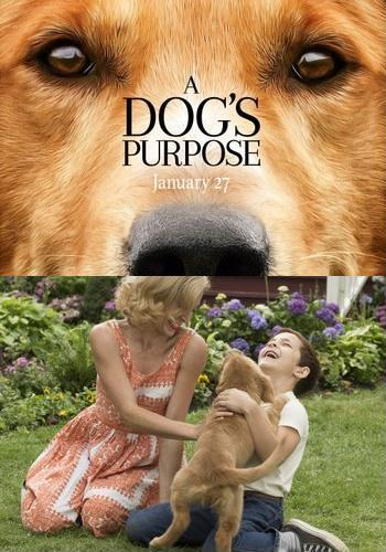 Picture for A Dog's Purpose