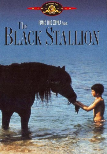 Picture for The Black Stallion