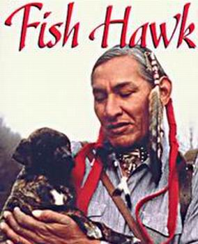 Picture for Fish Hawk