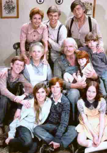 Picture for The Waltons